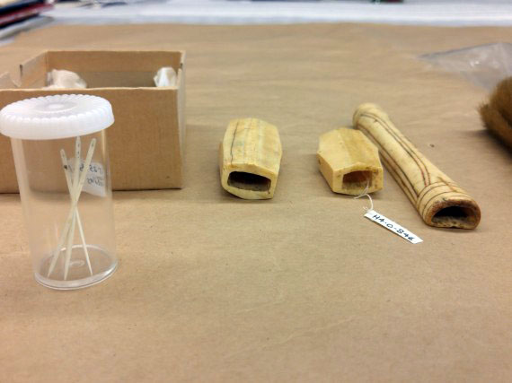 Two Inuit needle cases made of ivory, identified as coming from the central Arctic, beside the bone needle case that appears in the other photograph. The three needles are made of ivory and are likely to have been collected by Dr. Noel and Mrs. Jean A. Rawson between August 1944 and August 1946, while they were living in Chesterfield Inlet because Dr. Rawson was working in the hospital there. (PHOTO BY KRISTA ULUJUK ZAWADSKI/COLLECTION OF THE MANITOBA MUSEUM, WINNIPEG, MB)