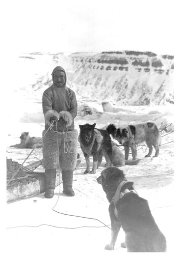 Minik Wallace, seen here with his dogs while on the Crocker Land Expedition, in 1909 proposed a plan for an all-Inuit trek to the North Pole.