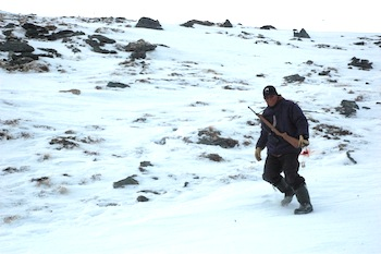 uide Noah Annahatak hunts ptarmigan in the canyon that houses the Puvirnituq River within Pingualuit park. (PHOTO BY SARAH ROGERS)
