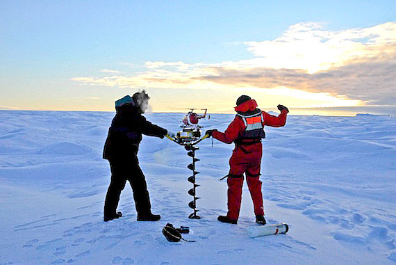 In an effort to track the path of potentially dangerous ice islands, Université Laval professor Jean-Eric Tremblay and Mathew Asplin, a graduate student from the University of Manitoba, use an ice auger on Oct. 18 to deploy a satellite beacon on an ice island south of Ellesmere Island. (PHOTO BY RENE HARDY/ARCTICNET)