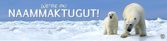 Nunavut Tunngavik Inc. will distribute this bumper sticker at the Convention on International Trade in Endangered Species meeting in Thailand next March. (IMAGE COURTESY OF NTI)