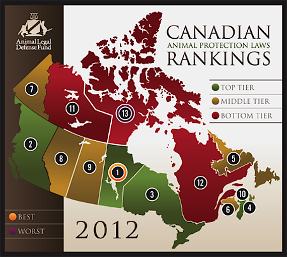 Report: Quebec best province, Nunavut best territory to be an animal