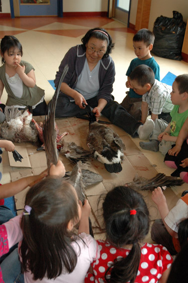An elder shows children at Mikijuq daycare in Kangiqsujuaq how to pluck a goose. (PHOTO BY SARAH ROGERS)