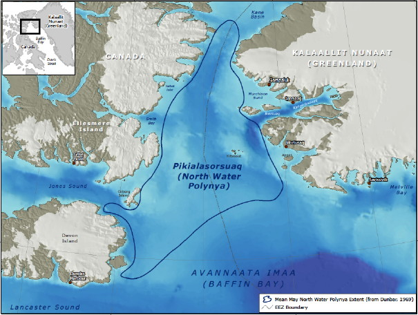 This graphic, taken from a recent opinion poll report commissioned by the Inuit Circumpolar Council-Greenland, shows the location of the biologically diverse North Water Polynya which may also contain underwater oil and gas reserves. Nearly half of Greenlanders polled (49 per cent) say oil and gas drilling should be limited or prohibited there.