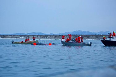 Clyde River hunting crews celebrate the harvest of a bowhead whale early Aug. 3. (PHOTO BY NIORE IQALUKJUAK)