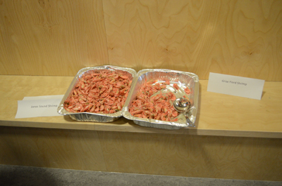 Samples of shrimp caught in Jones Sound near Grise Fiord. (PHOTOS COURTESY OF THE AFA)