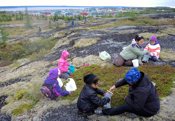 Women pick berries on the hills overlooking Kuujjuaq this part fall. (PHOTO BY ISABELLE DUBOIS)
