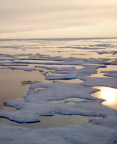 Arctic sea in the High Arctic in August: ice thickness has diminished since 1975, a new study from University of Washington researchers says. (PHOTO BY JANE GEORGE)