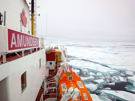 The CCGS Amundsen plows through early August ice in the Northwest Passage. But Canada needs more than new icebreakers — it also needs a new framework for Arctic marine traffic which would see more Inuit input and involvement, a new report from the Pew Charitable Trust says. (PHOTO BY JANE GEORGE)