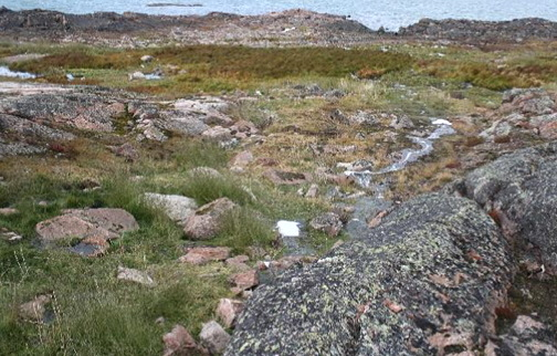 The wetland treatment area in Kugaaruk, photographed in 2012. (PHOTO BY ROB JAMIESON)