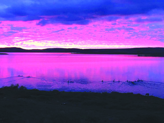 The sunset over eastern Hudson Bay turns to deep pink and purple July 28, as geese scatter from the shores of the community of Inukjuak. Nunavik's Hudson coast has above-seasonal temperatures and sun in its forecast for the first half of the week. (PHOTO BY BOBBY MINA)