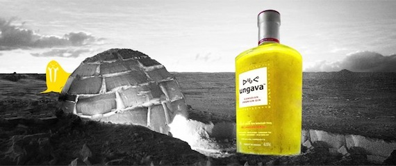 Near this igloo shown on an Ungava gin marketing image, there's a huge bottle of gin.