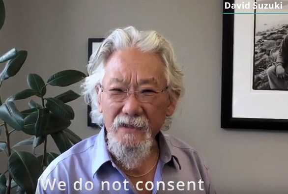 David Suzuki, one of the fathers of the Canadian environmental movement, is one of several celebrities and leaders featured in the new Greenpeace anti-seismic testing video.