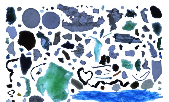 This collage of Arctic Ocean plastic, assembled by Andres Cozar, the lead author of a new study