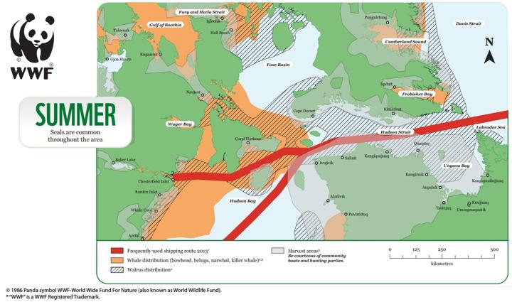Map Of Canada Today.New Nautical Maps Identify Nunavut Wildlife Hazards For Ships