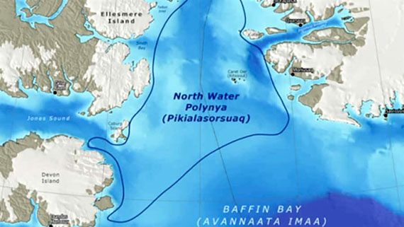 This map shows the North Water Polynya, or Pikialasorsuaq, which lies between Baffin Island and Greenland. (FILE IMAGE)