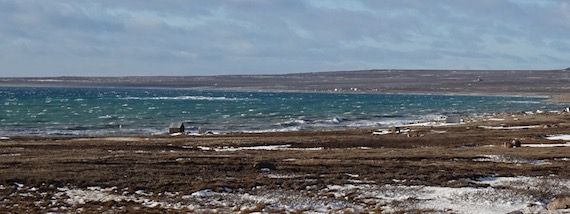 There's lots of room to build on Sandy Beach near the western Nunavut community of Cambridge Bay which features many kilometres of untouched sand. (PHOTO BY JANE GEORGE)
