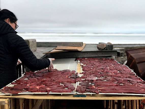 Paris Kaludjak lays out strips of caribou meat to make mikku (dried meat) on a table outside her family's cabin near Arviat. (PHOTO COURTESY OF PARIS KALUDJAK)