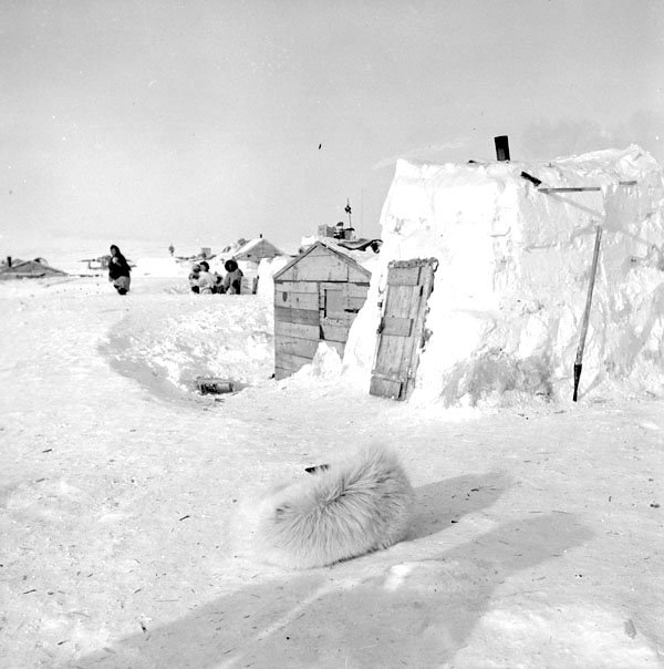 This photo, taken in 1956 during Governor General Vincent Massey's northern tour, shows the kinds of dwelling places that the Inukjuak Inuit used during their early years in Resolute Bay. (GAR LUNNEY/NFB/LIBRARY AND PUBLIC ARCHIVES CANADA)