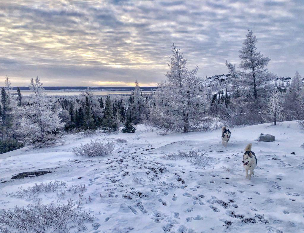 winter wonderland nunatsiaq news nunatsiaq news