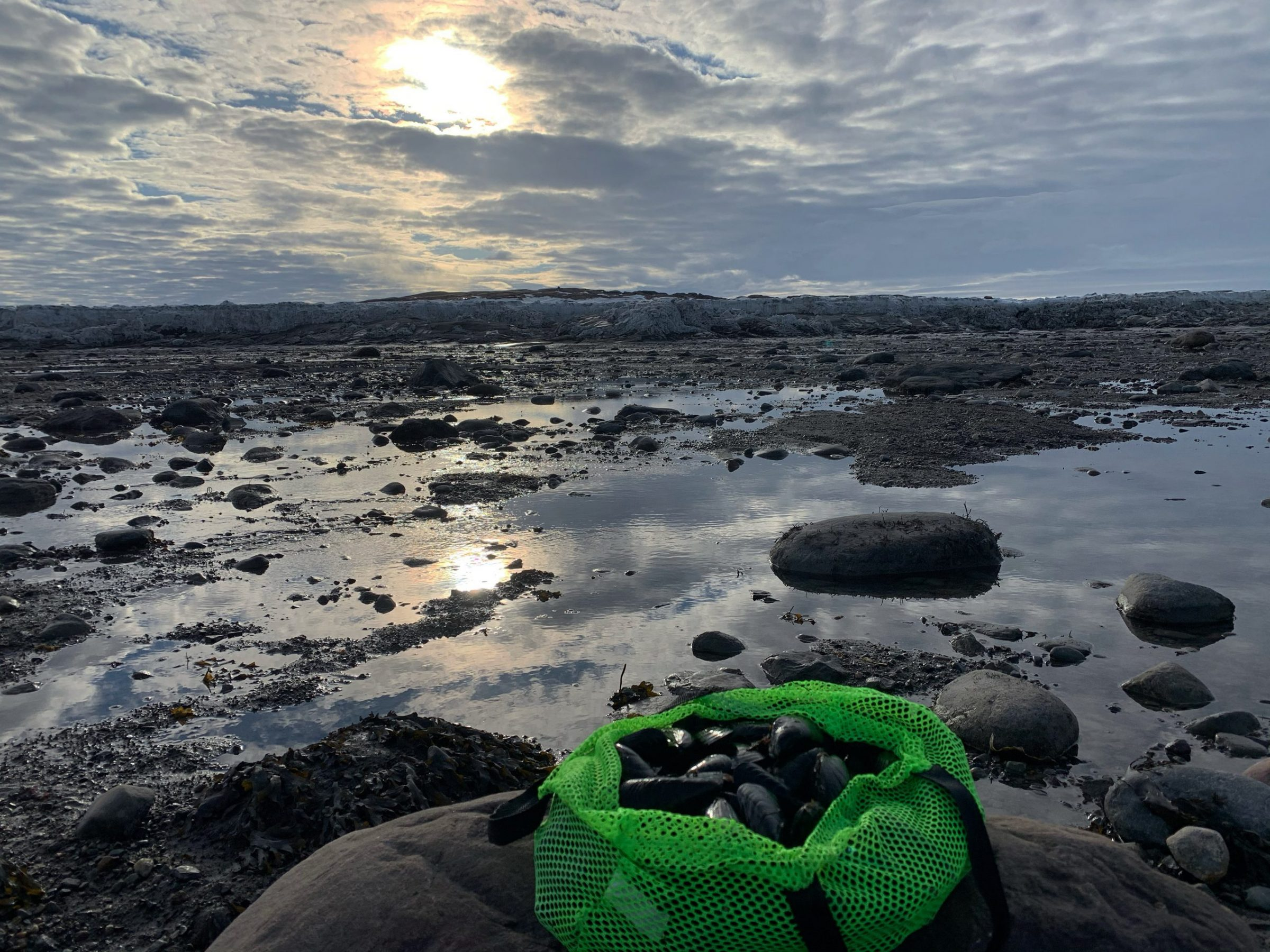 "Malaya Qaunirq Chapman took this photo while mussel picking during a snowmobile trip from Kuujjuaq to Kuujjuarusiq, or Dry Bay, on April 13. ""I've never gone springtime mussel picking, where the ice and snow are completely visible from the shore. The fresh crisp salty air was so refreshing!"" she writes. (Photo by Malaya Qaunirq Chapman)"